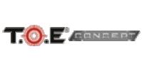 T.O.E Concept